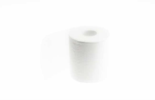 Бизнес на производстве туалетной бумаге